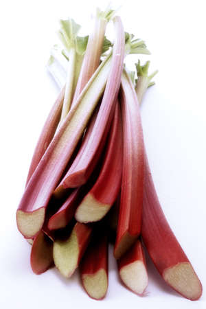 rhubarb Rheum officinale Stock Photo - 23707385
