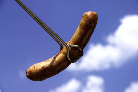 foodstill: fried sausage, close-up
