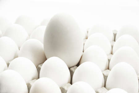 juxtaposing: Chicken eggs and a goose egg LANG_EVOIMAGES