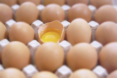 juxtaposing: Eggyolk