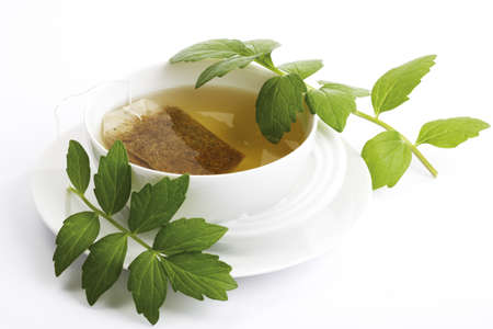 valerian plant: Valerian tea, Valeriana officinalis