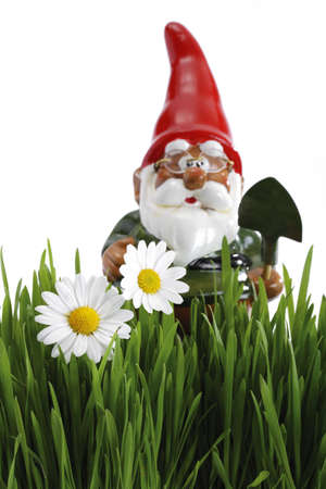 garden gnome: Garden gnome with spade, grass in foreground LANG_EVOIMAGES