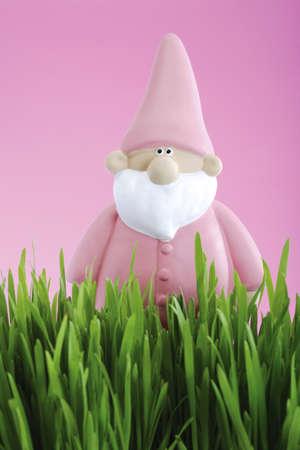nain de jardin: Nain de jardin rose LANG_EVOIMAGES