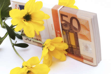 swindling: Euro banknote and yellow flower, close-up LANG_EVOIMAGES