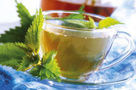 Stinging nettle tea Stock Photo - 23674626
