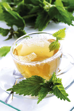 Stinging nettle tea Stock Photo - 23674627