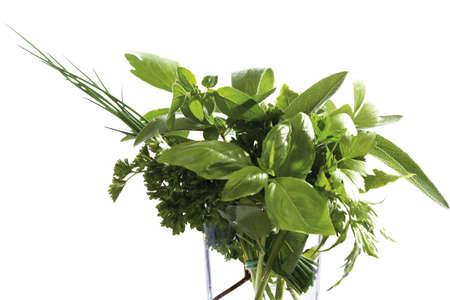 potherbs: Pot-hierbas en vidrio