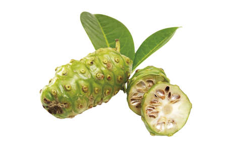 Noni fruits (Morinda Citrifolia) Stock Photo - 23675173