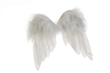 interiour shots: Angel wings