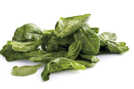 interiour shots: Fresh spinach leaves LANG_EVOIMAGES
