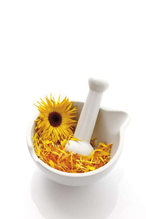 naturopath: Marigold blossoms (Calendula officinalis) in Mortar with pestle, elevated view