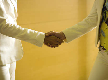 confiding: Two business women shaking hands, close-up, mid section