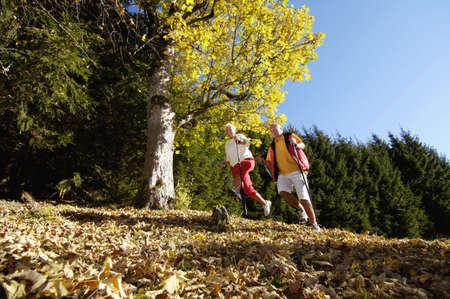 easygoing: Senior couple nordic walking outdoors