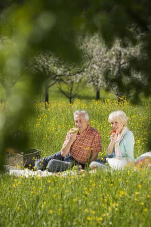 65 69 years: Germany, Baden Württemberg, Tübingen, Senior couple having picnic