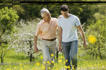 Germany, Baden Württemberg, Tübingen, Mature father and adult son walking through meadow LANG_EVOIMAGES