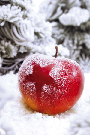 christmas apple: Natale mela LANG_EVOIMAGES