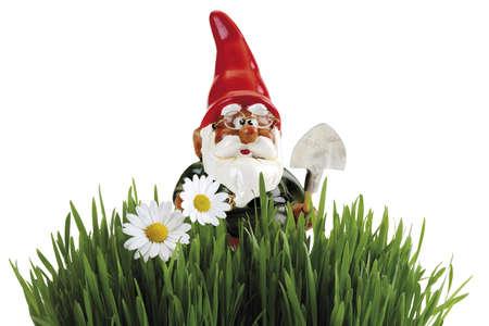 nain de jardin: gnome de jardin avec pelle, de l'herbe au premier plan
