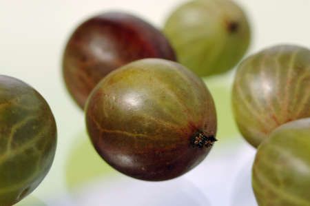 gooseberries: Gooseberries