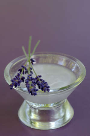 auras: Lavender salve in bowl with flowers, close-up