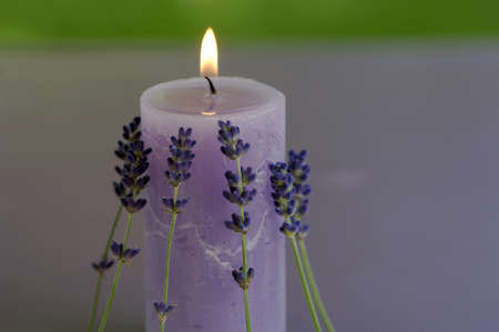 auras: Burning lavender candle with flowers, close-up