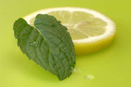 citrons: Lemon slice and mint leaf, close-up