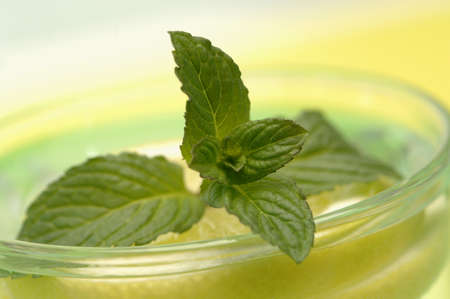 citrons: Mint in glass on lemon slice, close-up