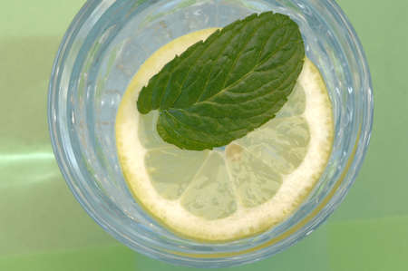 birdeye: Pfeppermint on slice of lemon in glass of water