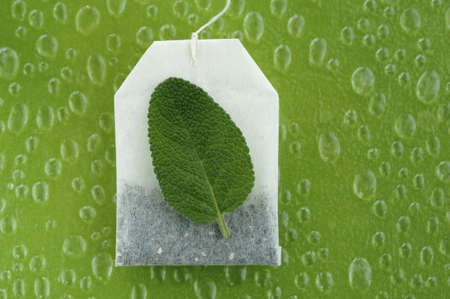 birdeye: Tea bag and sage leaf, close-up LANG_EVOIMAGES