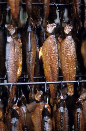 juxtaposing: Smoked trouts, close-up