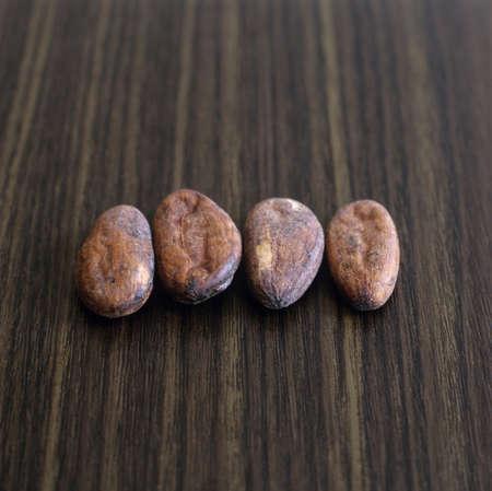 cacao beans: Los granos de cacao en una fila