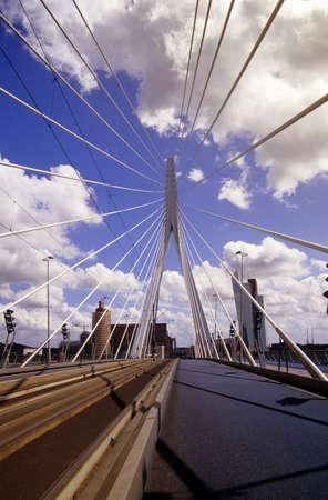 strives: Netherlands, Rotterdam, Erasmus bridge, low angle view