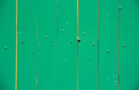 limber: Limber wall in green LANG_EVOIMAGES