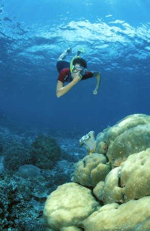 ber: Schnorchlerin über Korallenriff LANG_EVOIMAGES