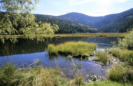 refle: Kleiner Arbersee, Bavarian Forest, Germany