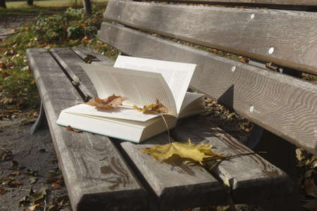 absence: Book on bench LANG_EVOIMAGES