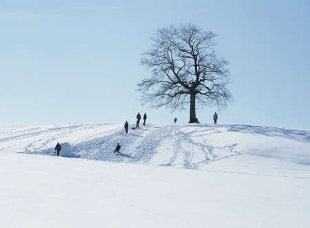 scenaries: People luging on a hill, Germany LANG_EVOIMAGES