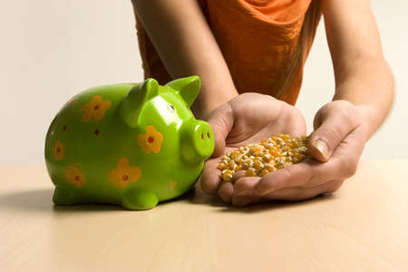 18 20 years: Young woman holding corn to piggy bank, close-up