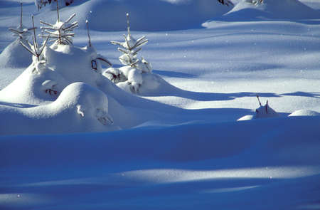 physical geography: Snowy landscape