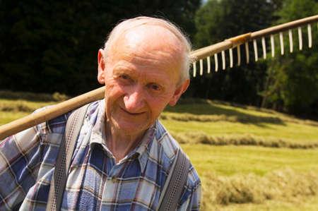 only senior adults: Austria Salzburger Land hay harvest LANG_EVOIMAGES