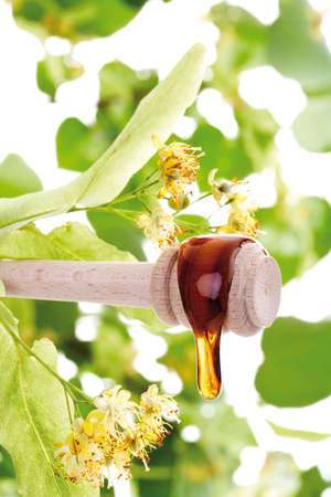 lime blossom: Lime blossom honey on spoon closeup LANG_EVOIMAGES