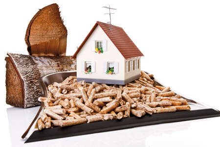 wood pellets: Wood pellets on Dustpan toy house and logs closeup