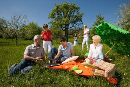 three generation: Germany Baden Wrttemberg Tbingen Three generation family having picnic in meadow