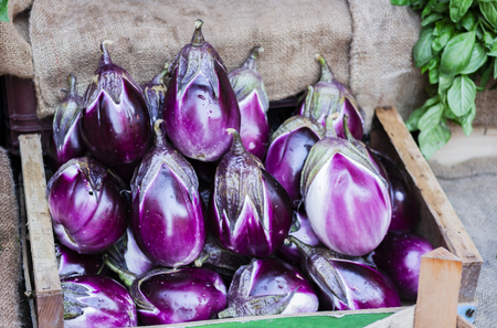 Ripe eggplants in the fruit market, Catania, Sicily, Italy Banco de Imagens - 111496944