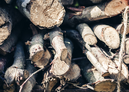 Dry cut logs firewood wood for home heating