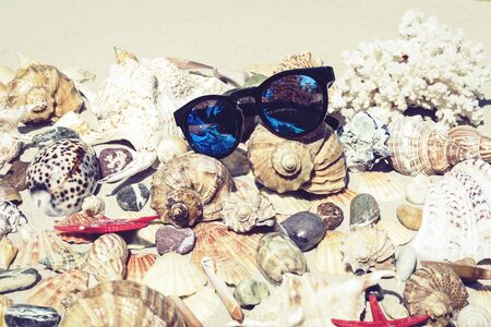 Sunglasses, seashells, sea stars, coral and stones on the sand, summer beach background travel concept with copy space for text