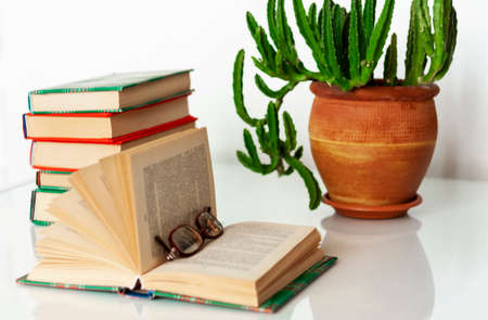 Cozy home interior decor: stack of books, plants in pots, open book on a white table. Distance home education.Quarantine concept of stay home