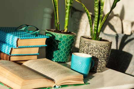 Distance home education: pile of books in colorful covers, glasses, cup of tea and Sansevieria (snake plant) in ceramic pots on a white table on the background of a bed with decorative pillows. Standard-Bild