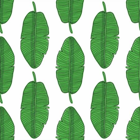 Hojas de plátano patrón transparente