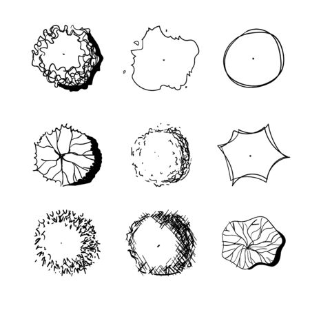 Hand drawn set of graphic trees, top view, for architecture and landscape.