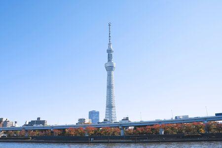 TOKYO - 29. NOVEMBER 2019: Tokyo Sky Tree - einer der höchsten Aussichtstürme in Tokio, ein Wahrzeichen, das von weitem als kein hohes Gebäude in der Nähe zu sehen ist.